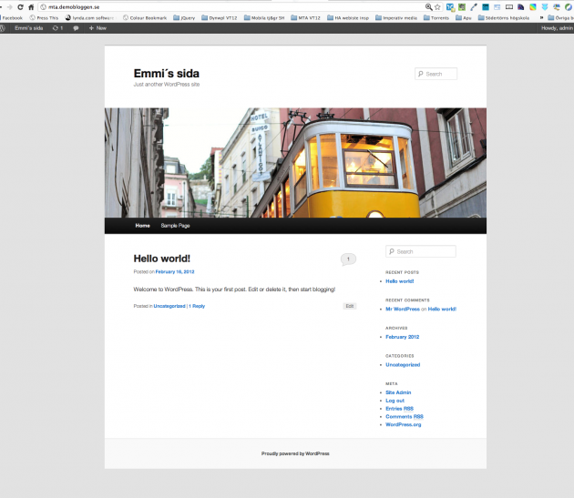 Din WordPress sida